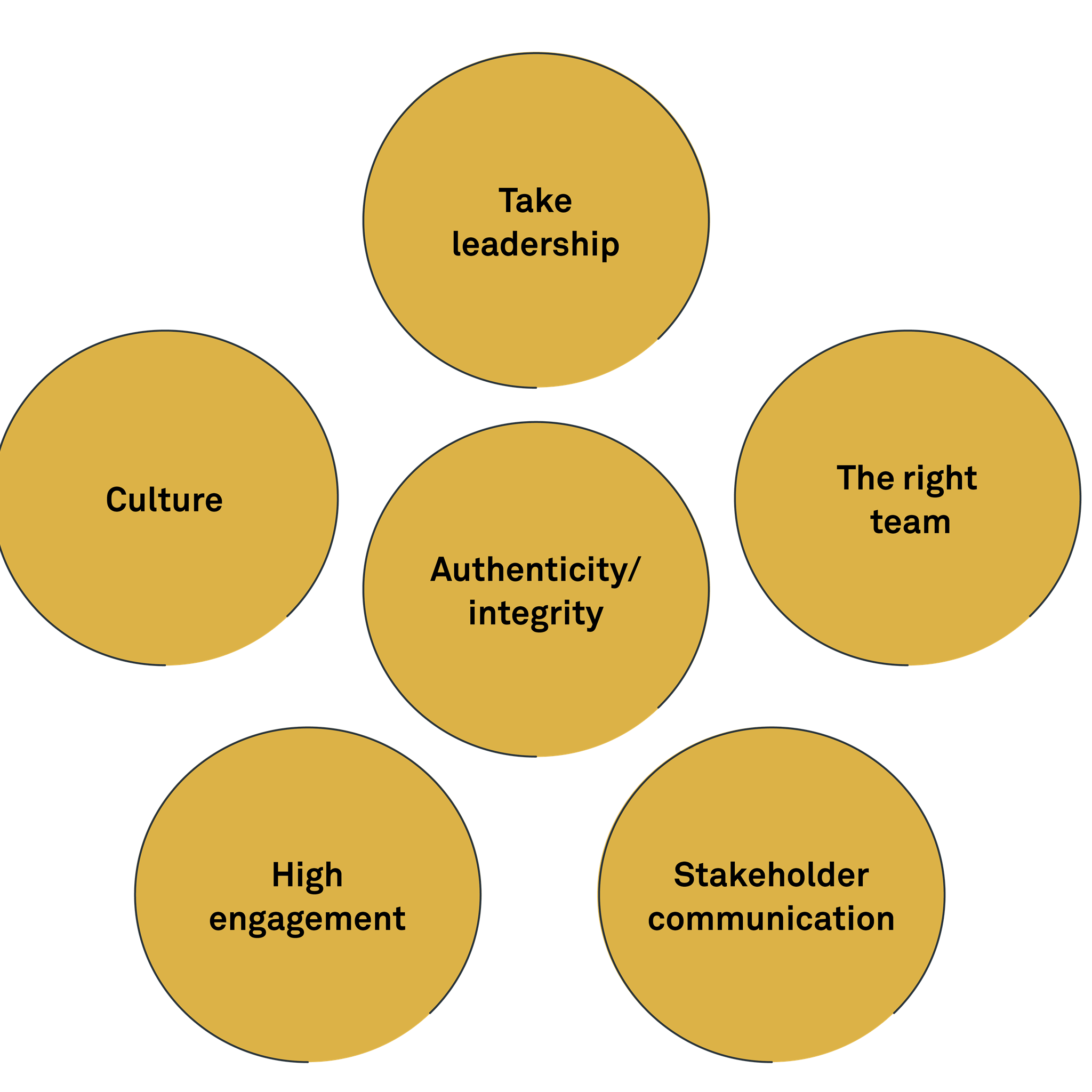 Six domains of change leadership that were considered critical by the CEOs