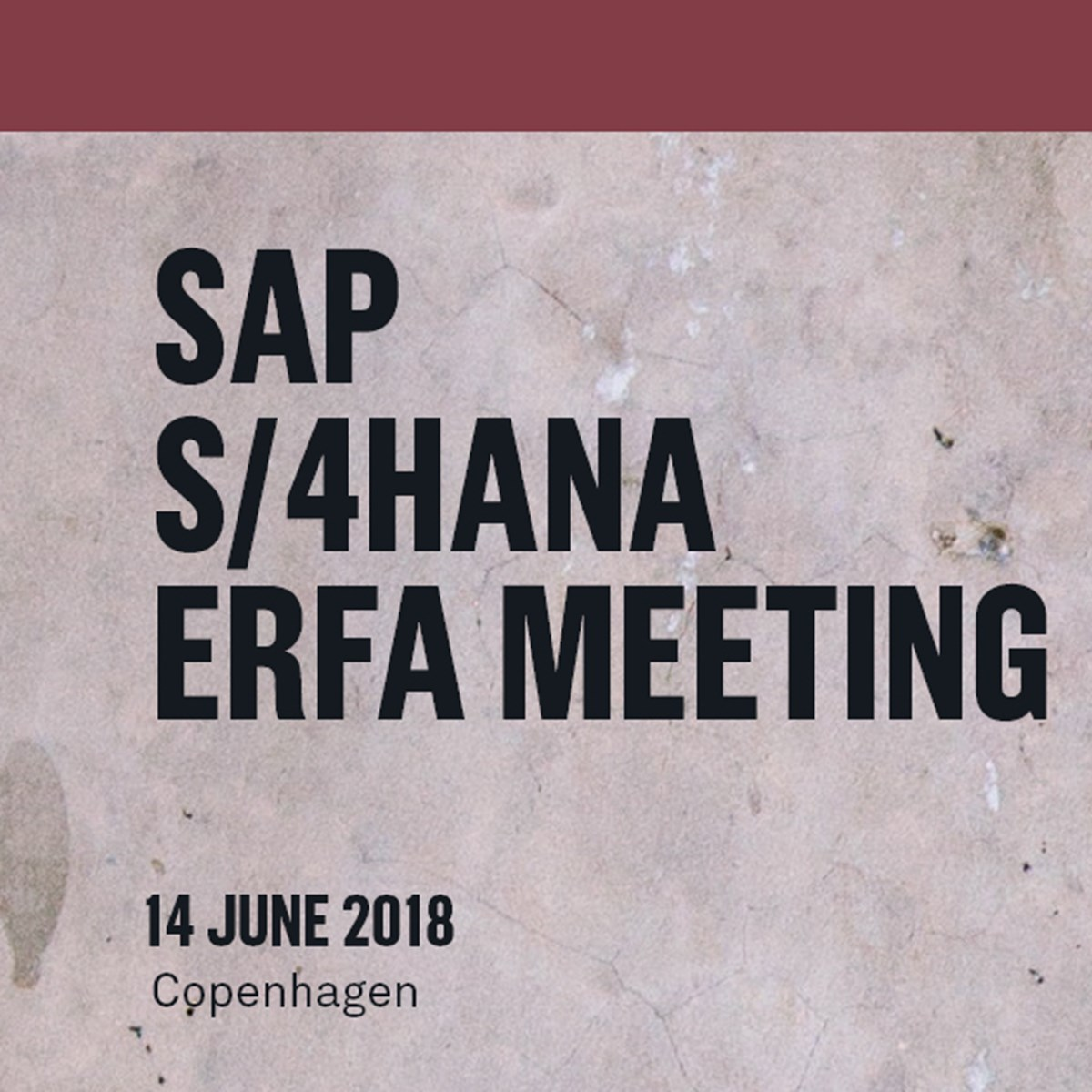 SAP S/4HANA ERFA meeting